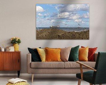 Küstenschutz-Projekt Niederlande von Miranda van Hulst