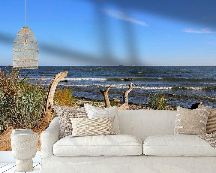 Beispiel fototapete: Strandgut  von Ostsee Bilder