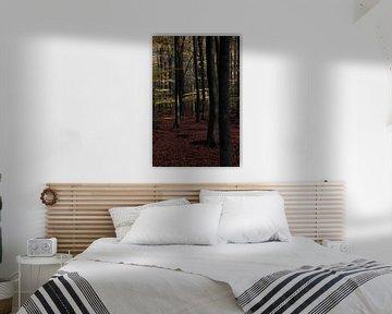Spring in the forest van Kees Lieben