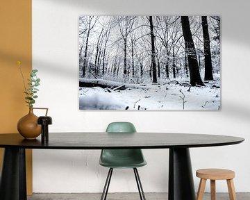 Winterse taferelen von Jan Diepeveen