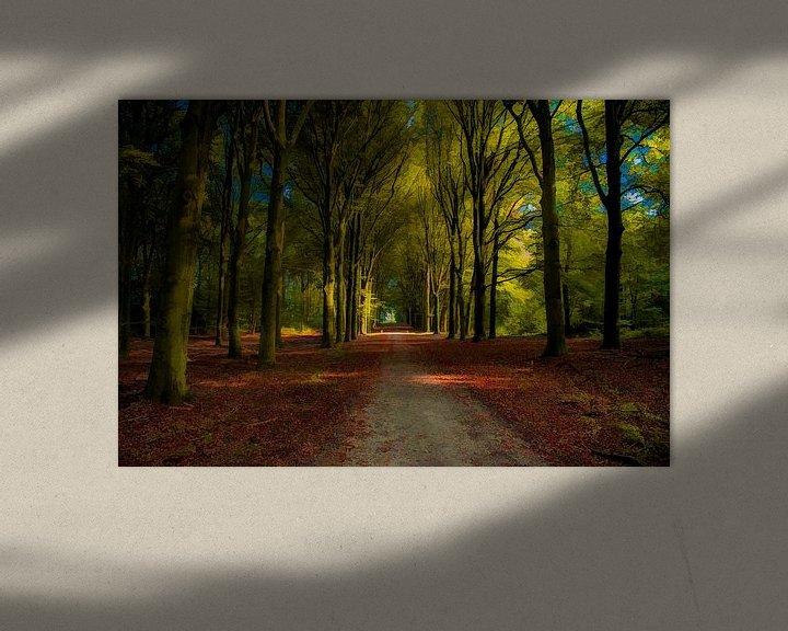 Sfeerimpressie: Schilderachtig bospad van Jan Diepeveen