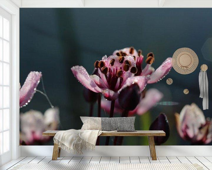 Sfeerimpressie behang: Zwanenbloem van FotovanHenk