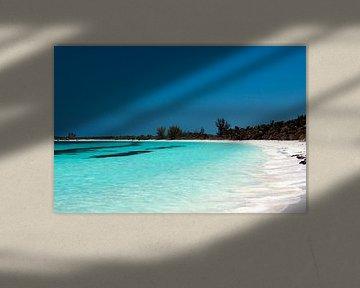 Tropisch strand van Margot van den Berg