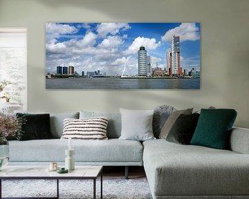 Skyline Rotterdam  van Roel Dijkstra