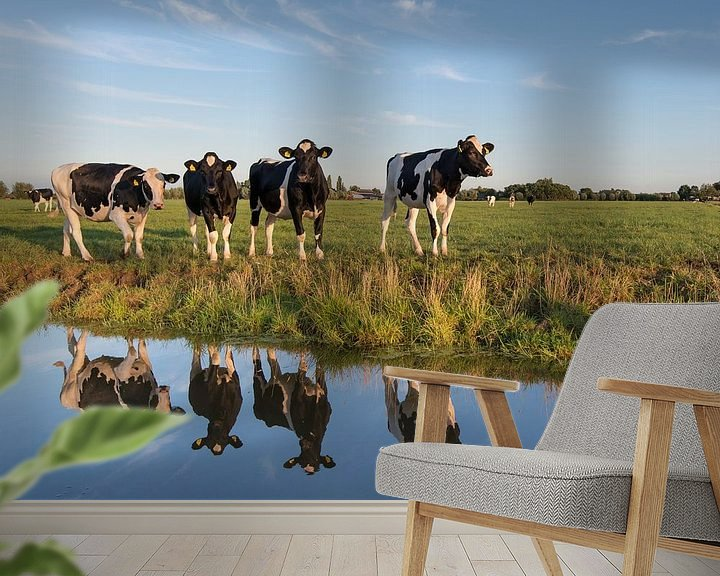 Sfeerimpressie behang: Typisch Nederland van Raoul Baart