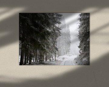 Zweeds winterbos van Arthur van Iterson