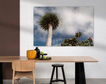 Bloeiende cactus en losstaande boom van Adri Vollenhouw