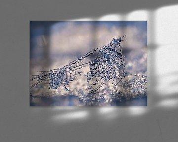 Kristal-Rooster (Filigrain IJsvormen) van Caroline Lichthart
