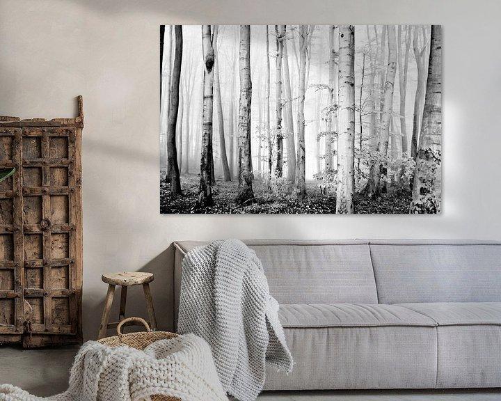 Sfeerimpressie: cloud forest van Norbert Sülzner
