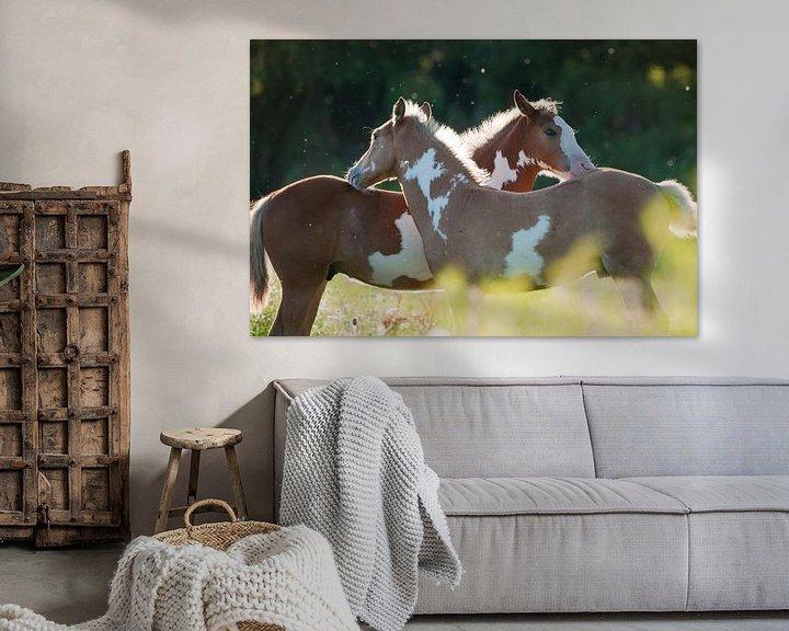 Sfeerimpressie: Wilde paarden in de Rijnstrangen van Tamara Witjes