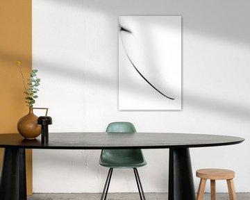 serie the Opposite, Mes wit (abstract-keukengerei) von Kristian Hoekman