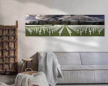 american cemetery  van dominic wildschut