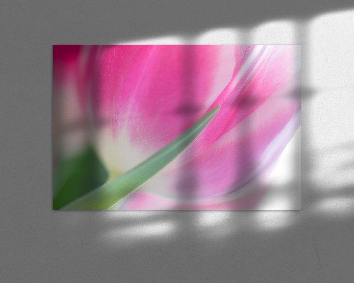 Sfeerimpressie: Tulp van Judith Borremans