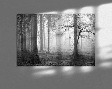 Mist in het bos von Gonnie van de Schans
