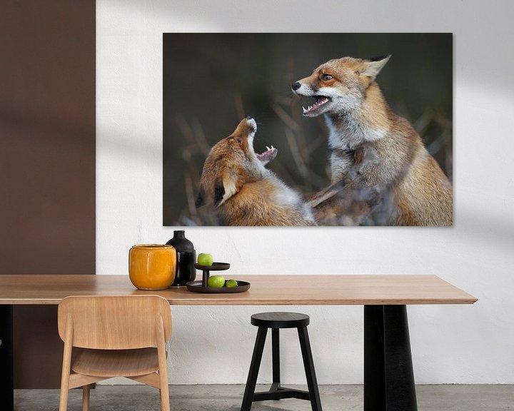 Sfeerimpressie: Fighting foxes van Pim Leijen