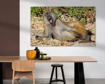 So tired - Africa wildlife van W. Woyke