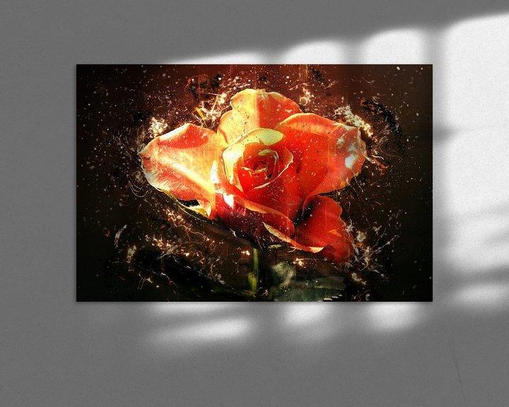 Beispiel: Summer rose in love von Dagmar Marina