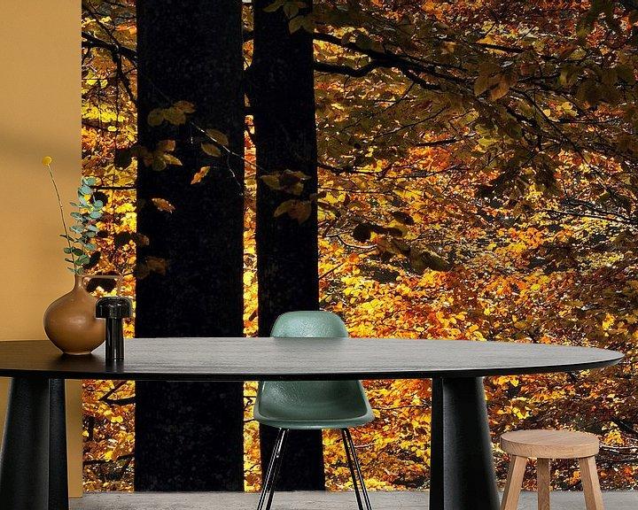 Sfeerimpressie behang: Beukenbomen in de herfst van Gonnie van de Schans