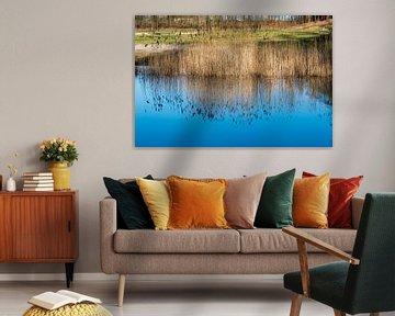 blauwe weerspiegeling van de lucht in het water van ChrisWillemsen