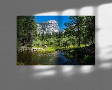 Yosemite mirror lake van Ilya Korzelius