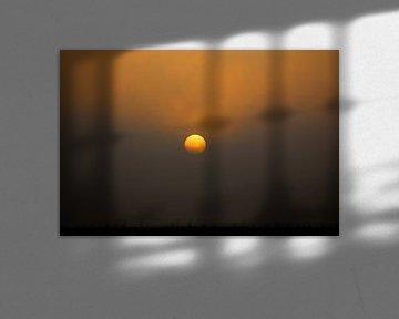 De dag is weer begonnen van Fotografie Jeronimo