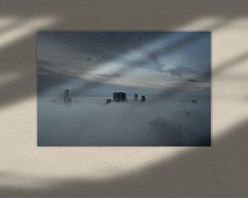 Rotterdamse Schone  van Marcel van Duinen