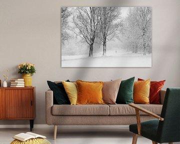 Winterstilte van M.e. Amrani