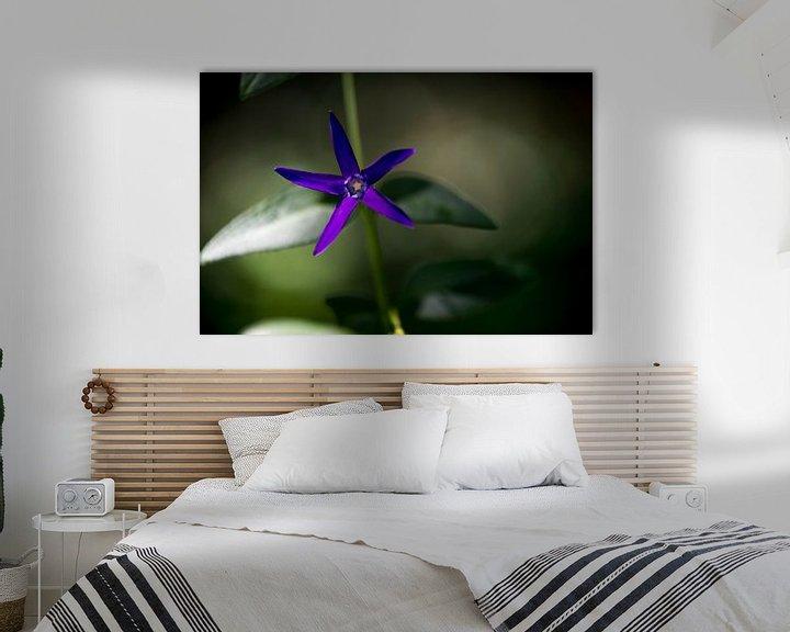 Impression: Purple Power Flower sur Harald Harms