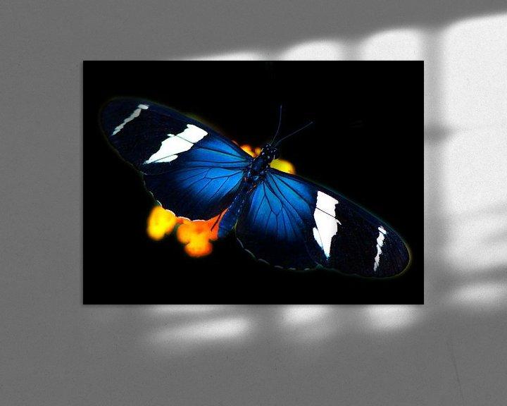 Sfeerimpressie: Vlinder in tropische tuin van Ina Hölzel