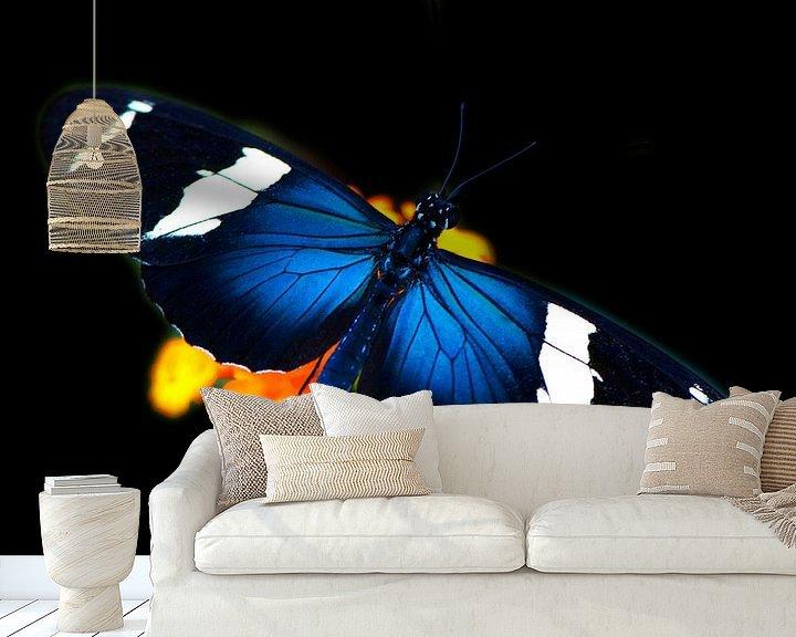 Sfeerimpressie behang: Vlinder in tropische tuin van Ina Hölzel
