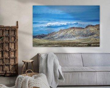 Prachtige kleuren in het woestijnlandschap in Colorado, Amerika van Rietje Bulthuis