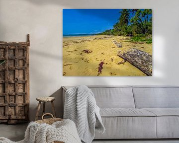 """Verlassener Strand am Gesetz Tropen """"in Queensland, Australien von Rietje Bulthuis"""