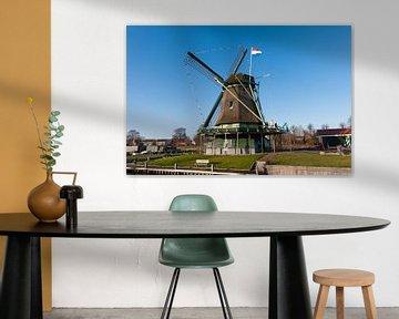 Windmill in the sun