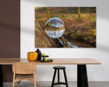 Door een glazen bal #6 van Robert Wiggers