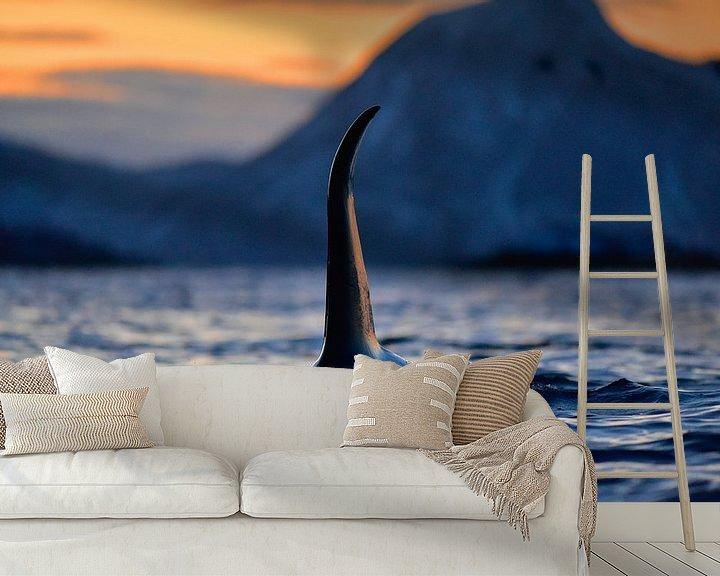 Sfeerimpressie behang: Indrukwekkende orca met enorme rugvin in de Noorse fjorden  van Koen Hoekemeijer