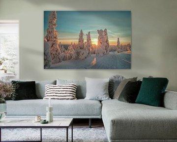 Winter zon van Menno Schaefer