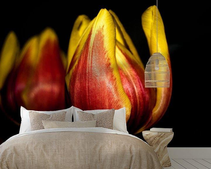 Sfeerimpressie behang: Tulp van Saskia Cloo-Hartsema