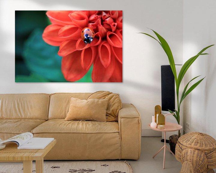 Sfeerimpressie: Lieveheersbeestje. van Patrick Brouwers