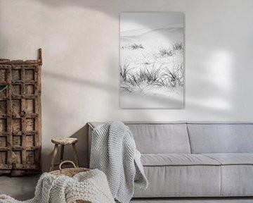 Winterlandschaft mit Dünengras von Vanessa D.