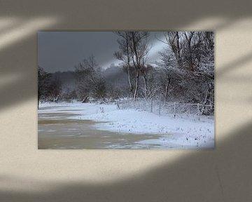 Besneeuwd landschap van Vanessa Devolder