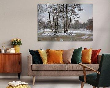Winterlandschap van Vanessa Devolder