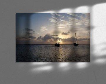 Zeezicht Bonaire van Vanessa Devolder