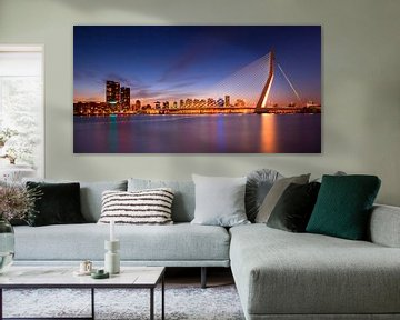 Skyline Rotterdam van Frank Peters