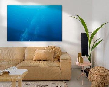 Luchtbellen onderwater van Vanessa D.