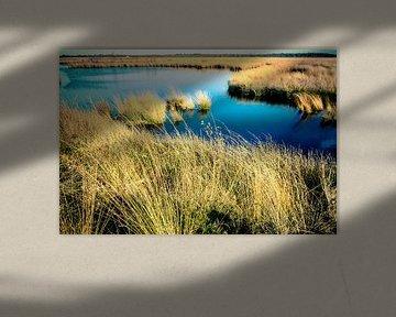 Engbertsdijksvenen (2) sur Rob van der Pijll