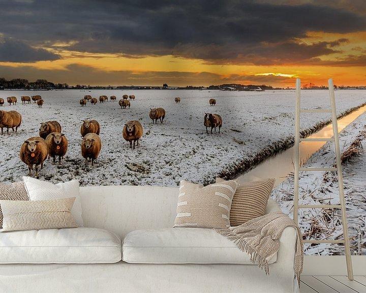 Sfeerimpressie behang: Schapen,  sneeuw, donkere wolken en een opkomende zon van Remco Bosshard