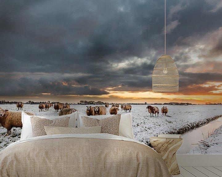Sfeerimpressie behang: Schapen, sneeuw, wolken en een opkomende zon (laag standpunt) van Remco Bosshard
