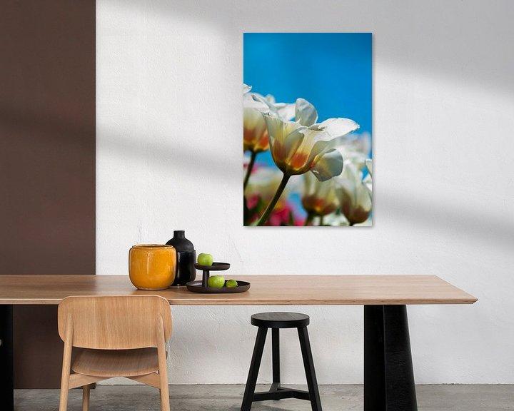 Beispiel: Weiße Tulpen von Ton de Koning