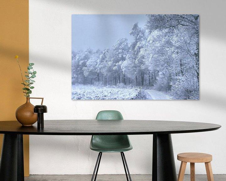Sfeerimpressie: bospad met sneeuw beschenen van Alfred Stenekes