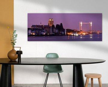 Skyline Dordrecht van Frank Peters